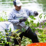 Photo of a volunteer weeding