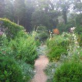 Photo of Deborah Nevins' lush garden
