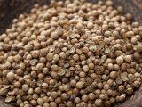 Photo of coriander seeds