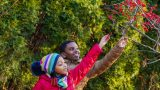 Children examining berries on a tree.
