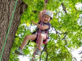 Girl tree climbing with harness