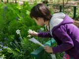 Student studying a white flower