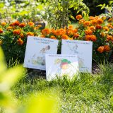Photo: Wonders in the Garden!: A Celebration of Spring and Early Literacy