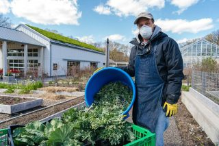 Edible Academy Employees Harvesting Produce