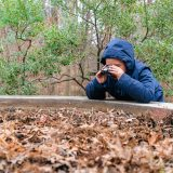 Little boy in blue hooded jacket holding binoculars looking at brown fallen leaves in a pile, while resting his elbows on a cement ledge. Bare trees behind him with one tree that has some green leaves on it.