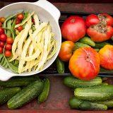 Fresh vegetables grown from a garden