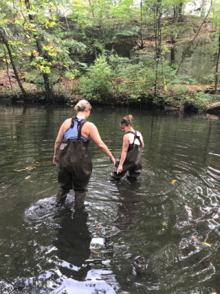Photo of teachers wading into the Bronx River
