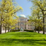 tulip trees and lawn in front of Mertz library building