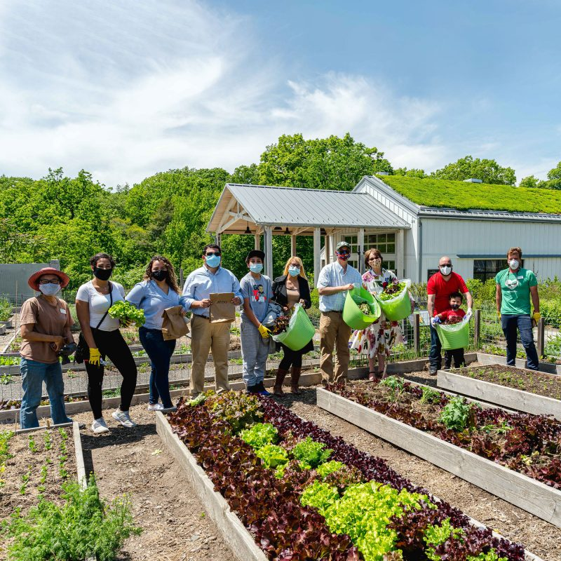 Photo of councilmembers in the Edible Academy