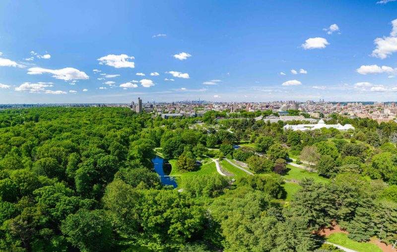 Overhead photo of NYBG in spring