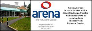 Arena ad