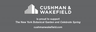 Cushman & Wakefield Ad