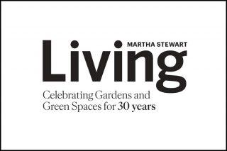 Martha Stewart ad