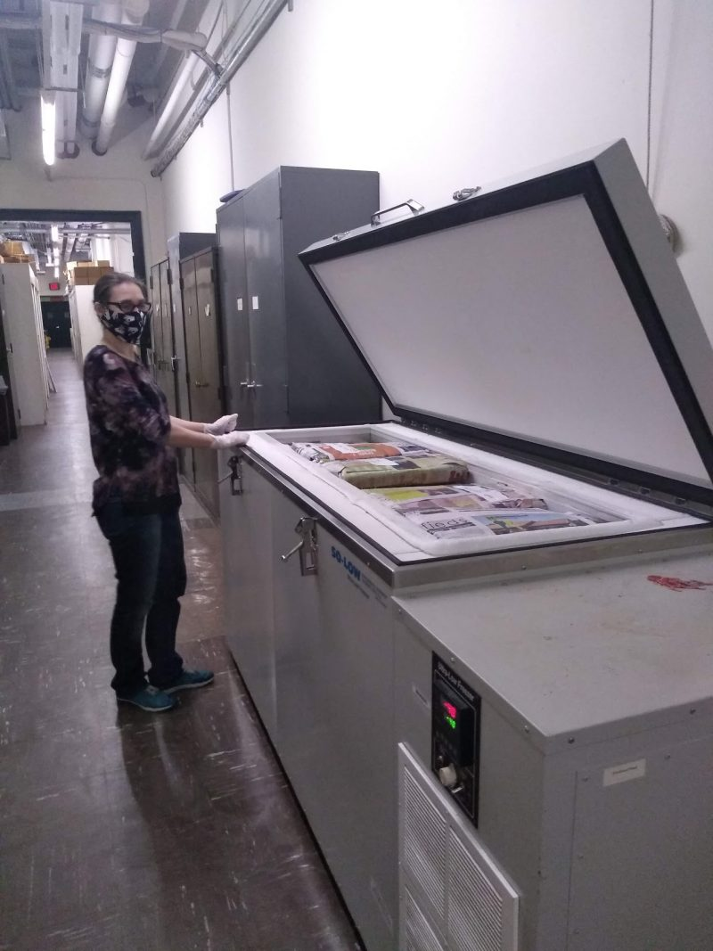 Herbarium Shipping Manager Lucy Klebieko, getting ready to remove specimens from freezer.