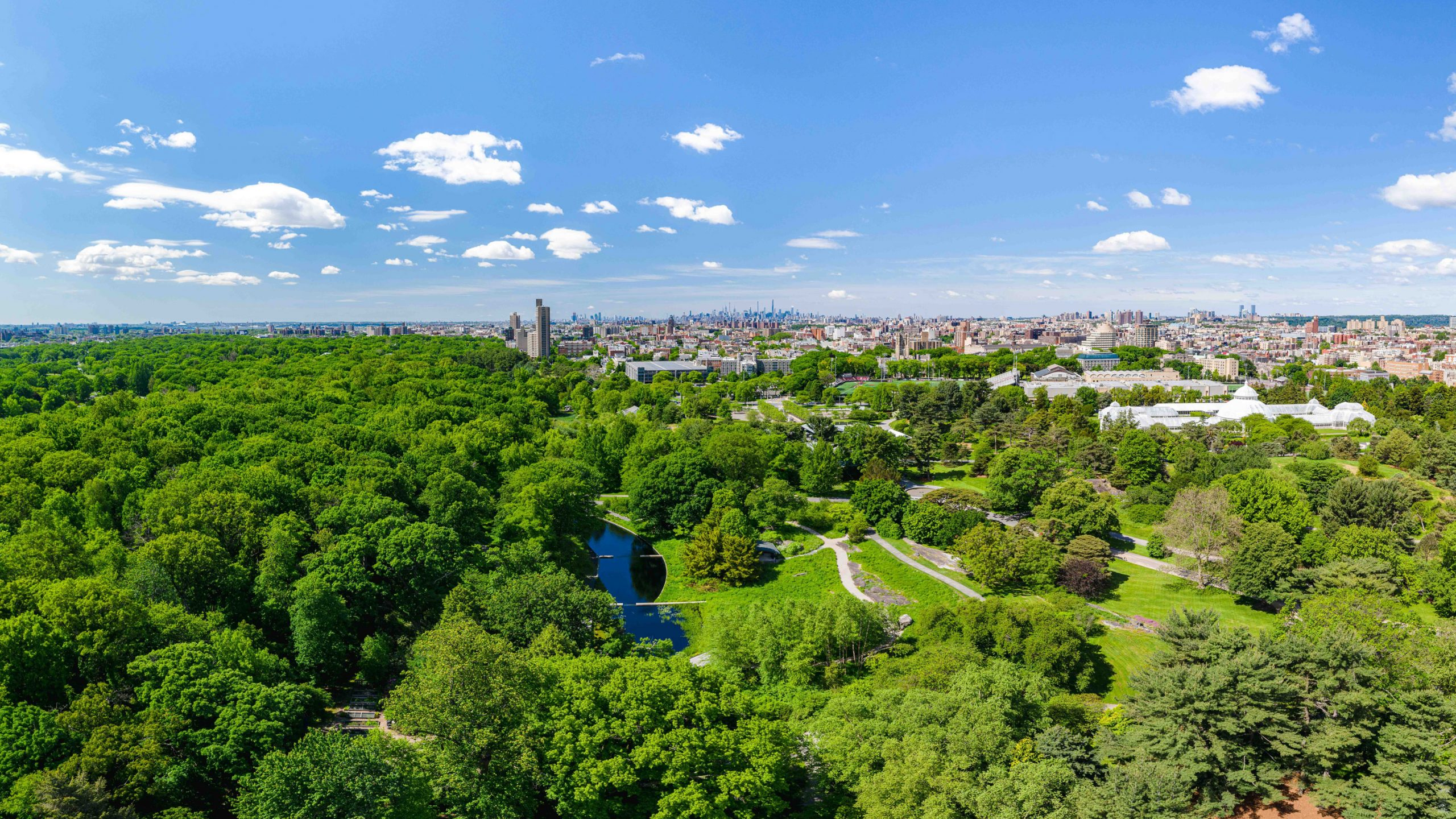An aerial view of the Garden, with the Conservatory and the Bronx skyline off in the distance.