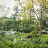 an image of Brandywine Cottage surrounded by plants and trees