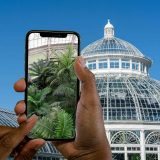 Mobile guide of the Palm Dome