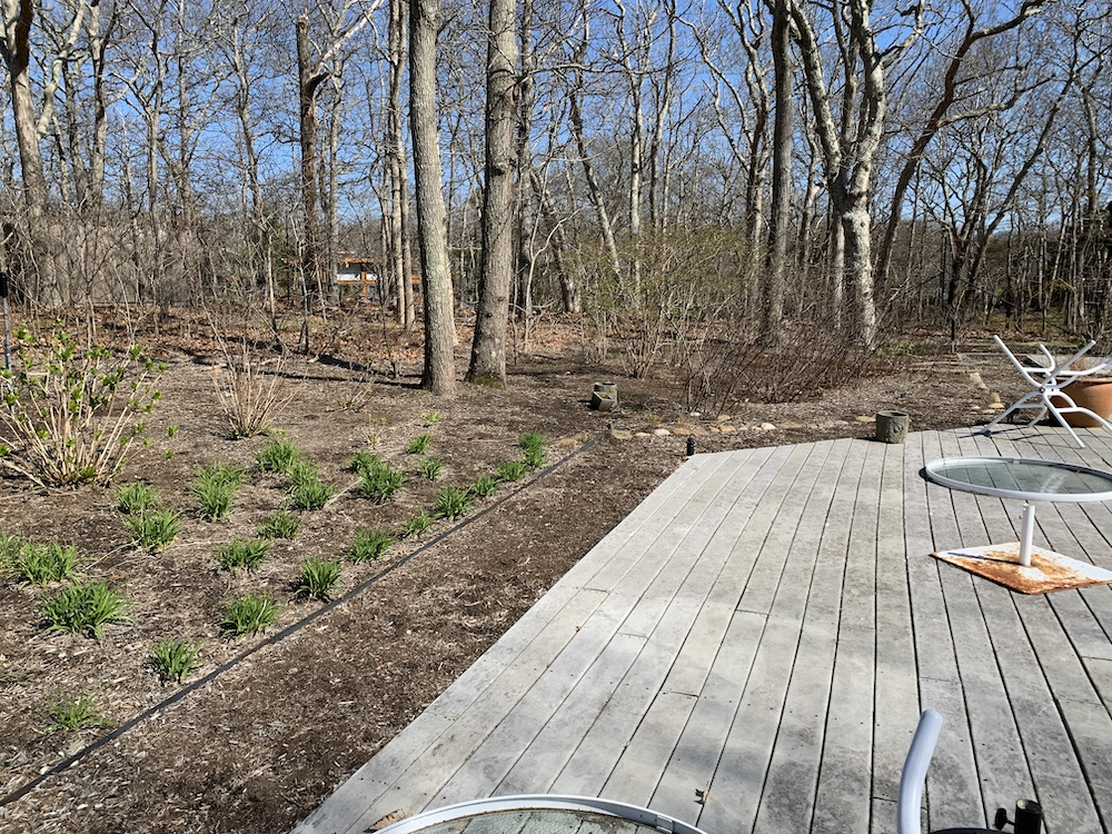 Photo of the barren Long Island property