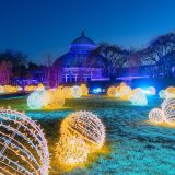 Conservatory view of NYBG GLOW at The New York Botanical Garden