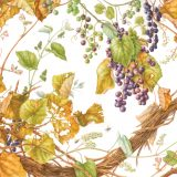 Pencil drawing of botanial illusration of purple grapes and greenish yellow leaves on white paper
