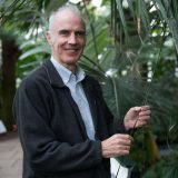 Head shot of Dr. Andrew Henderson wearing a light blue button down shirt with a dark blue blazer standing next to tall palm trees inside a conservatory.