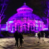 NYBG GLOW - Enid A. Haupt Conservatory