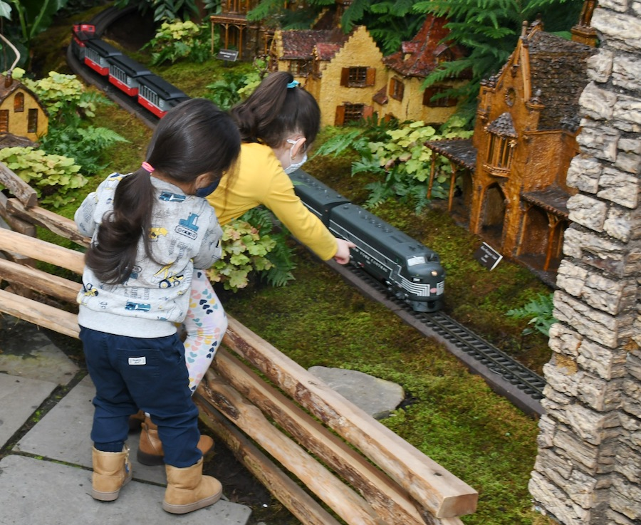Photo of attendees in the Holiday Train Show during Bronx Community Member Days