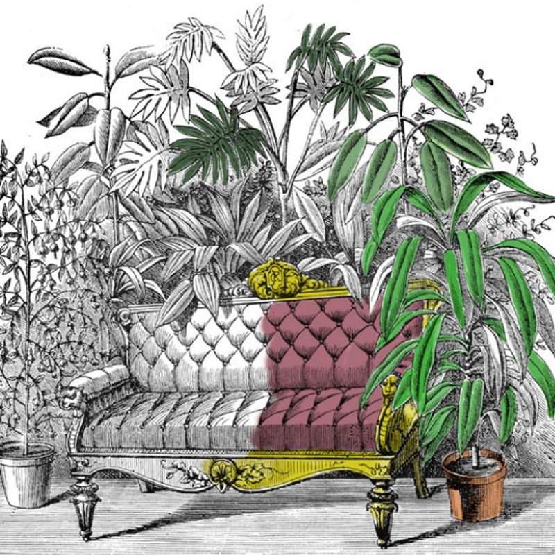 Illustration of a horticultural parlor with a couch surrounded by plants