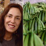 Judith Carney headshot next to okra