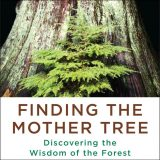 Finding the Mother Tree cover art