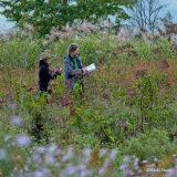An image of Dan Pearson and Midori Sintani in the Tokachi Millennium Forest