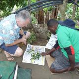 Photo of botanists examining a specimen in Vanuatu's forest