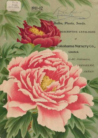 A catalog cover for Yokohama Nursery Co., featuring prominent billowy pink and red flowers.