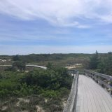 Photograph of Fire Island, with a boardwalk path in the middle of green and sand going far off into the distance and a large blue sky above with light clouds.