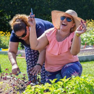 Two women in summer gardening attire laugh as they learn to harvest herbs from the Barnsley vegetable beds on a sunny day