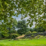 Lush deciduous leaves hanging from trees frame a scene of rocks planted with flowers and surrounded by green grass