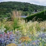 A riot of hardy grasses and flowering plants rises up in the foreground in browns, greens, and purples, while hedges and a forested hillside are visible in the distant background