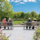 Four people sit on adjacent benches on a terrace, looking out over an expanse of rich green forest, a planted rose garden, and blooming shrubs, with a blue sky beyond