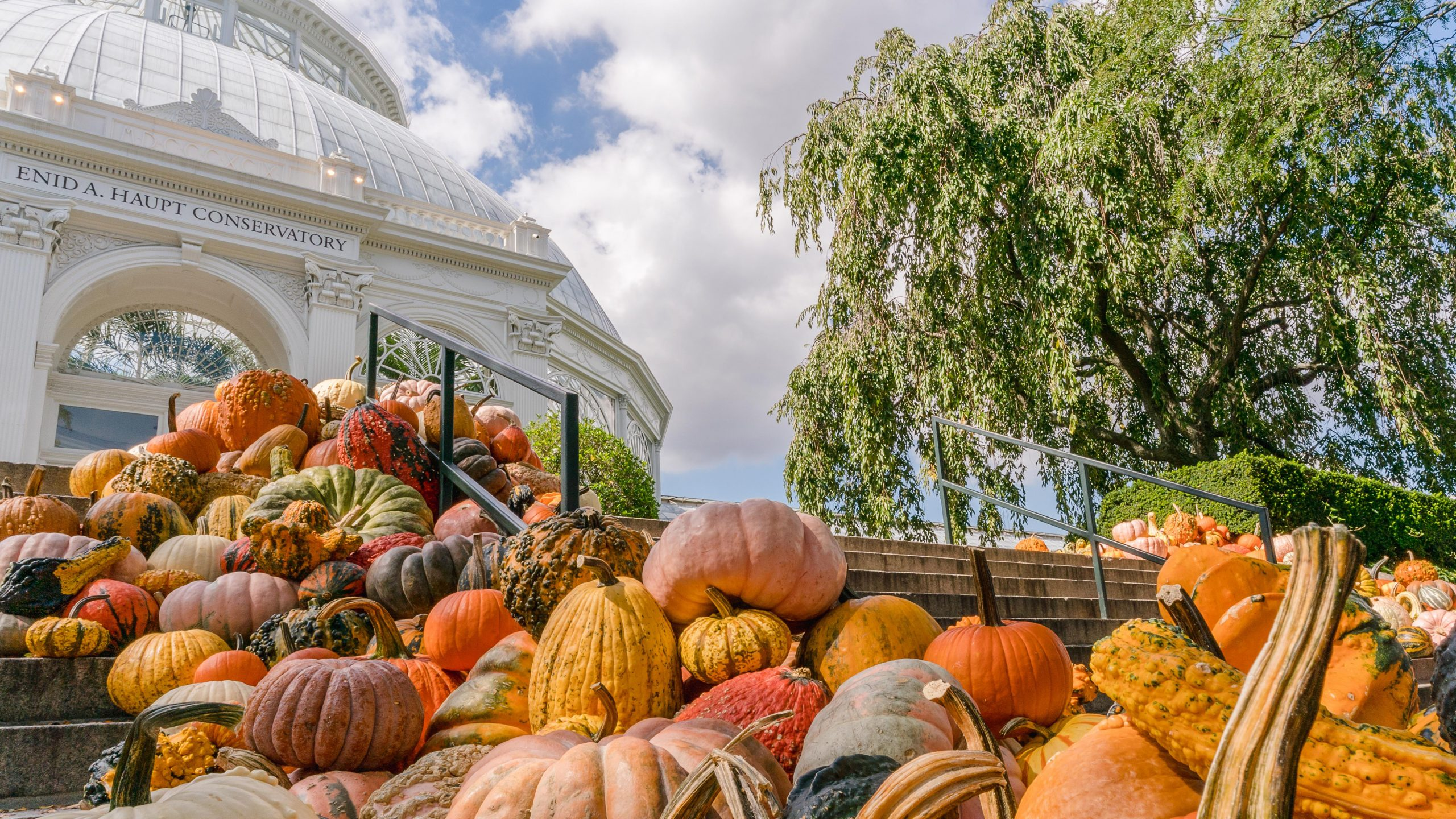 A hill of assembled pumpkins and gourds in green and orange covers a staircase leading up to a glass Conservatory dome