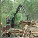 A man operating a piece of heavy equipment uses its claw arm to capture and lift lumber with a forest visible in the background
