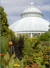 Picture of the New York Botanical Garden conservatory dome