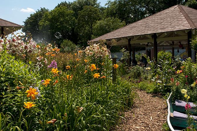 Summer Programs For Kids At The New York Botanical Garden
