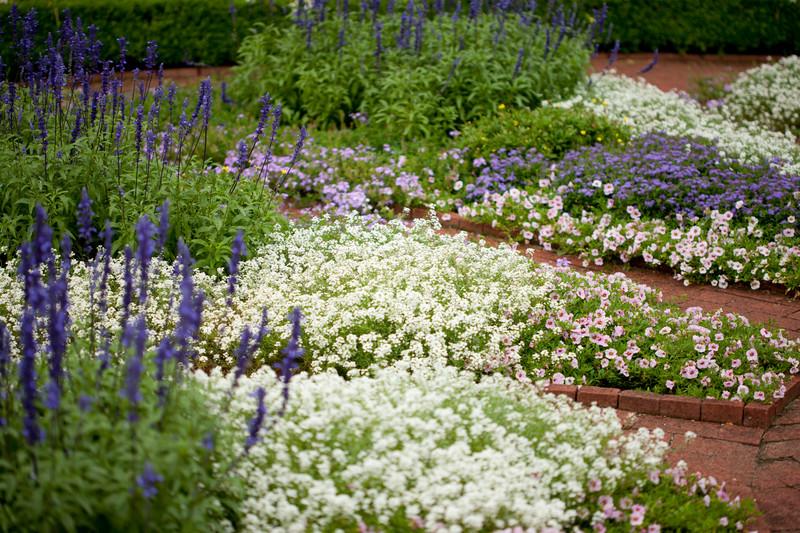 Teen Center Gardening Summer 19