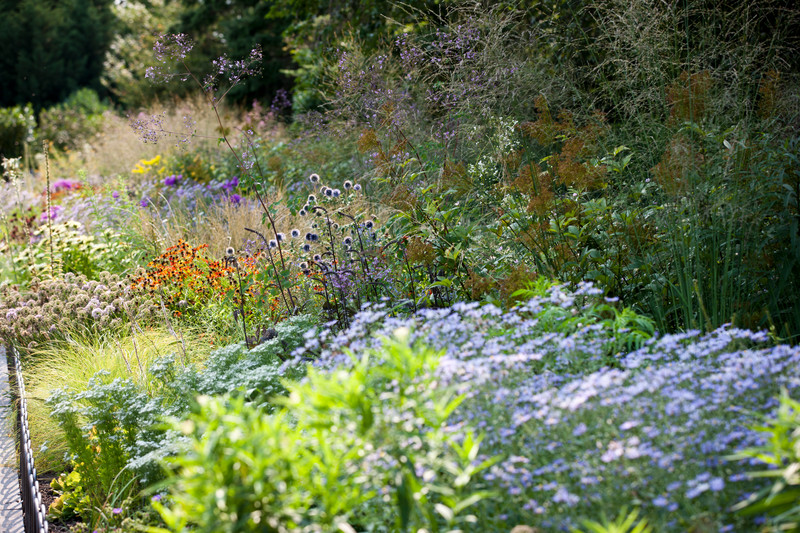 Seasonal walk nybg for Piet oudolf fall winter spring summer fall