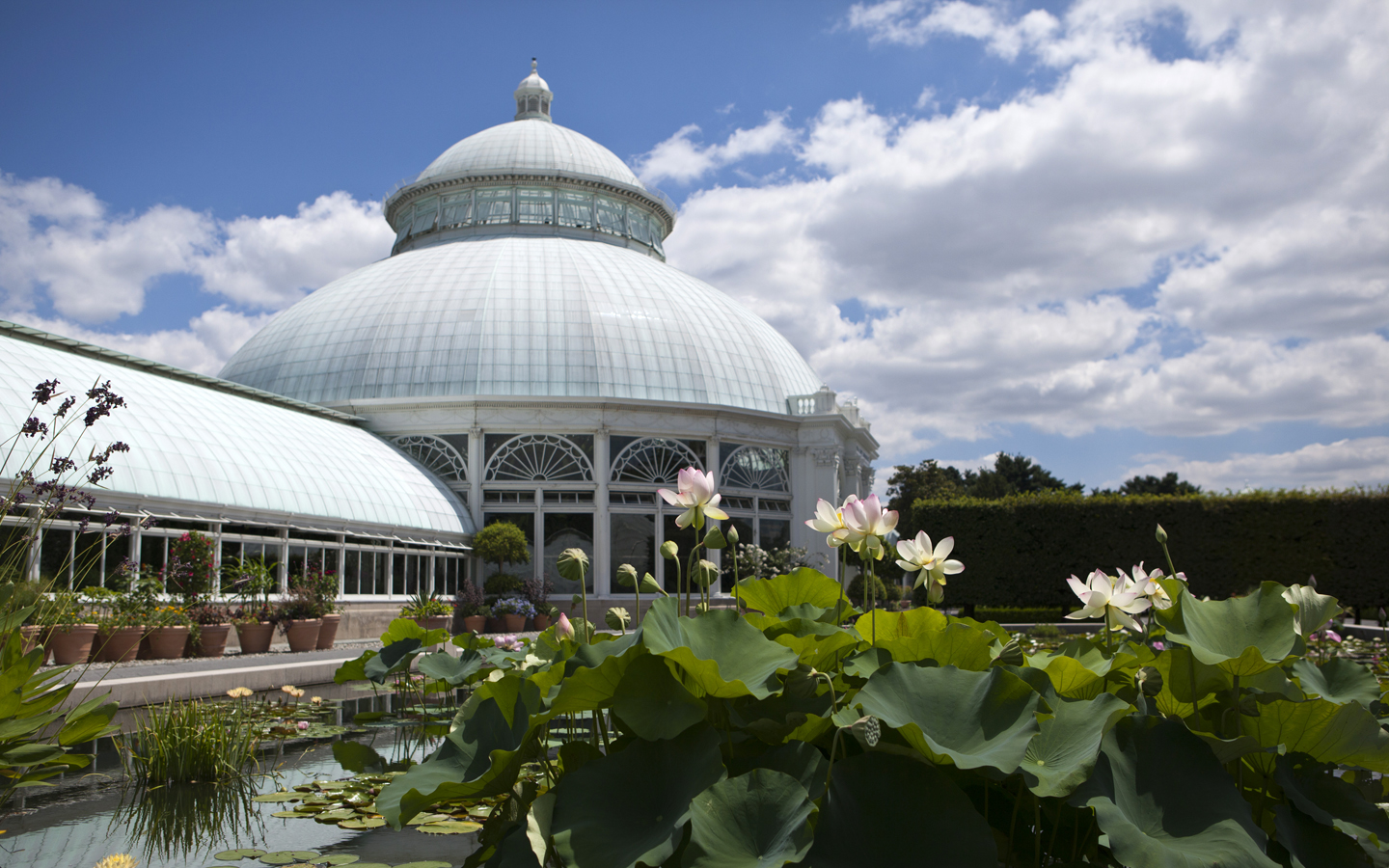 New york botanical garden - New york botanical garden directions ...