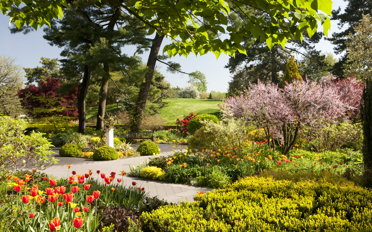 New York Botanical Garden Hours